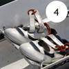 4 - Shoes